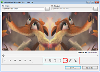 Free Video Flip and Rotate: seleziona i profili